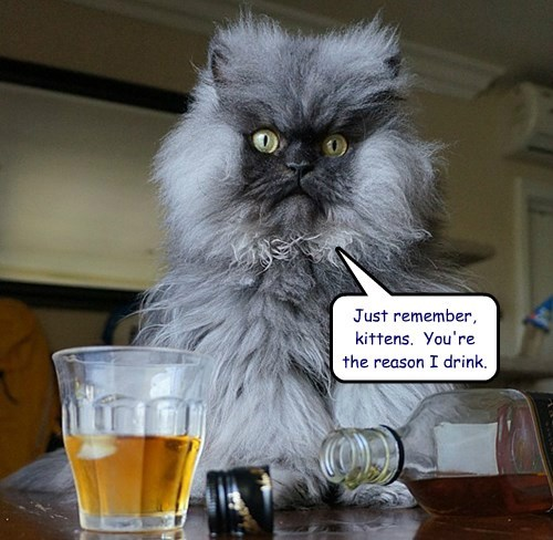 Just remember, kittens.  You're the reason I drink.