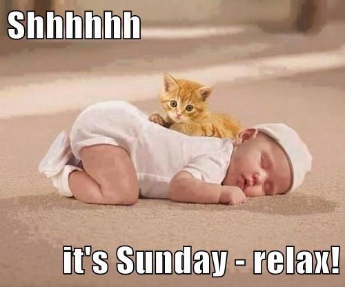 Shhhhhh  it's Sunday - relax!