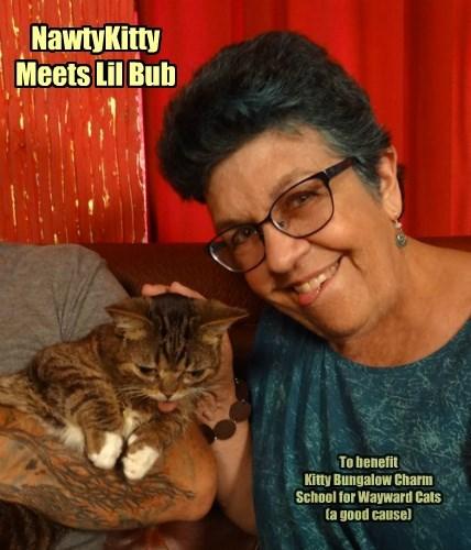 NawtyKitty Meets Lil Bub