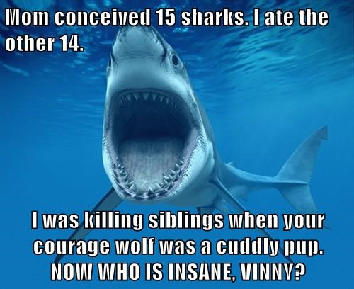 Mom conceived 15 sharks. I ate the other 14.  I was killing siblings when your courage wolf was a cuddly pup.                 NOW WHO IS INSANE, VINNY?
