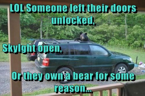 LOL Someone left their doors unlocked, Skylght open, Or they own a bear for some reason...