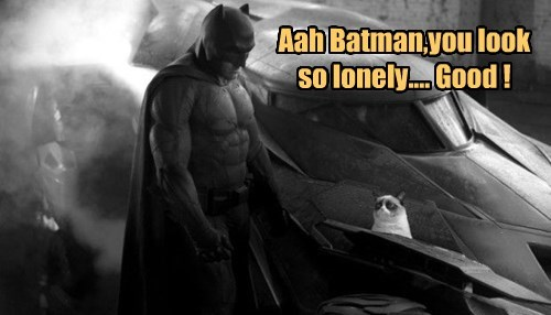Aah Batman,you look so lonely.... Good !