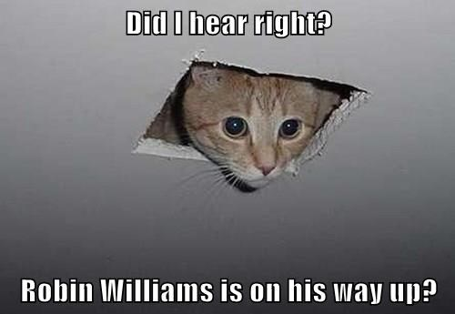 Did I hear right?  Robin Williams is on his way up?
