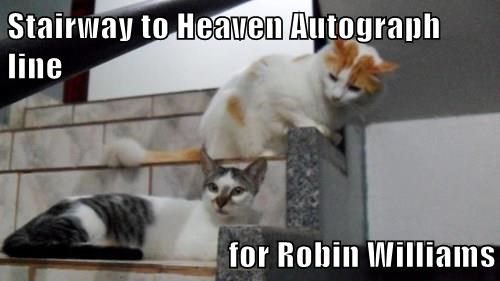Stairway to Heaven Autograph line  for Robin Williams