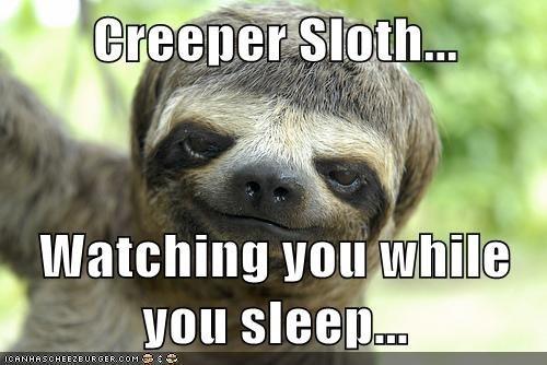Creeper Sloth