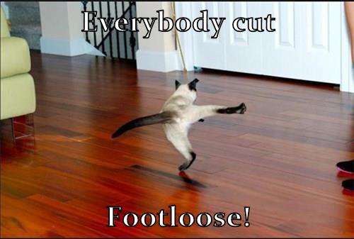 Everybody cut  Footloose!