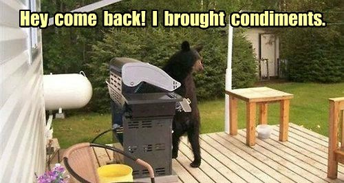 Bears Just Want Tasty Burgers And Brats