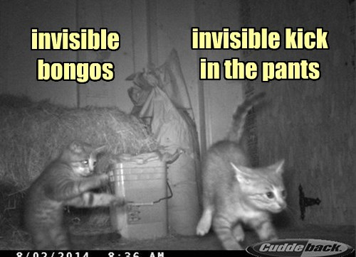 Invasion of the Invisible
