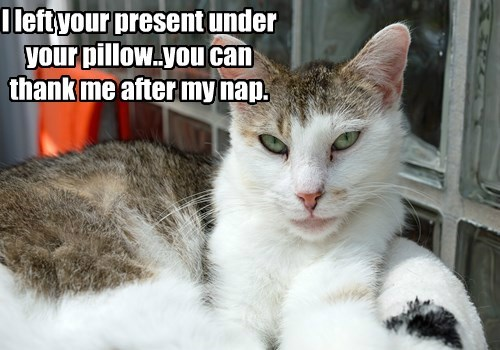 I left your present under your pillow..you can thank me after my nap.