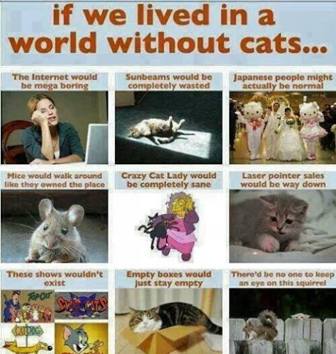 If we lived in a world without cats....by unknown
