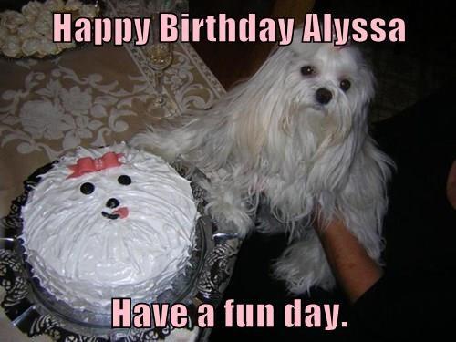 Happy Birthday Alyssa  Have a fun day.