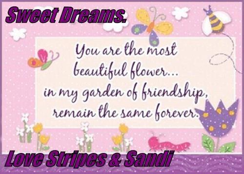 Sweet Dreams.  Love Stripes & Sandi
