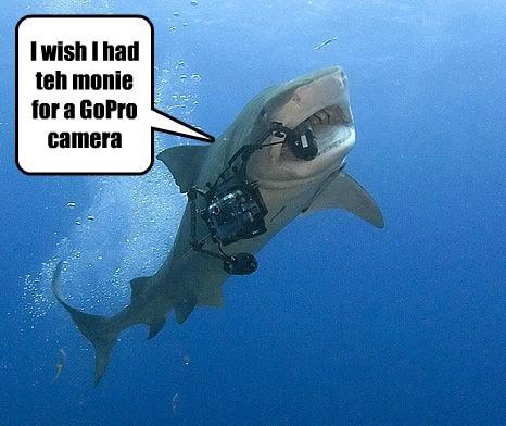 I wish I had teh monie for a GoPro camera