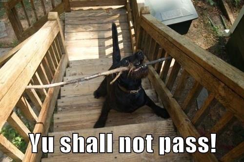 Yu shall not pass!