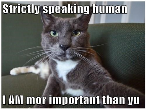 Strictly speaking human  I AM mor important than yu