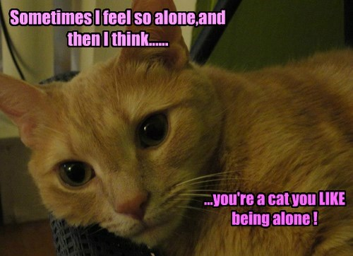Sometimes I feel so alone,and then I think......
