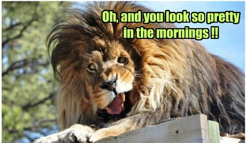 Oh, and you look so pretty in the mornings !!