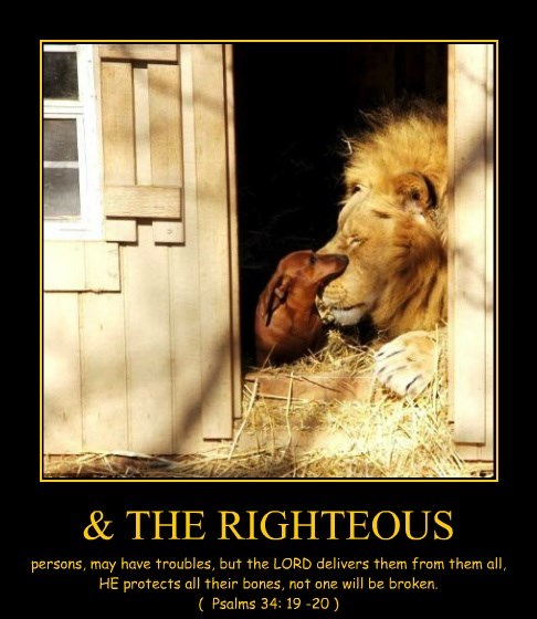 & THE RIGHTEOUS