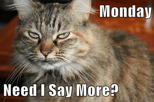 Monday  Need I Say More?