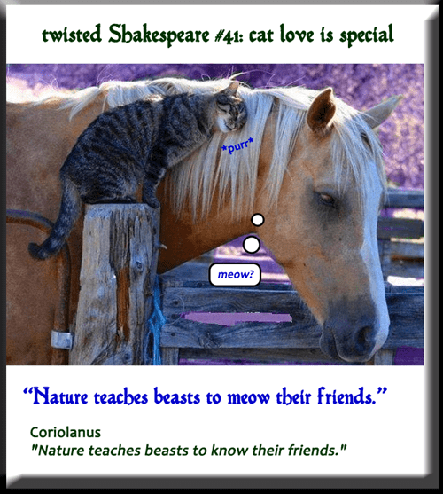twisted Shakespeare #41: cat love is special