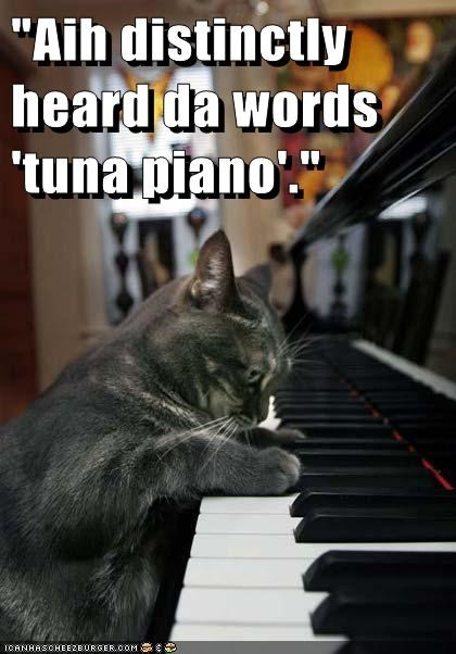 """Aih distinctly heard da words 'tuna piano'."""