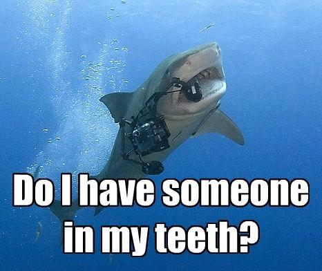 Need a toothpick.