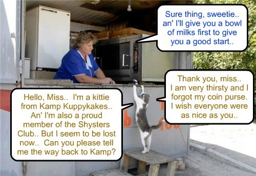 Shyster Club Kamper Millicent Elizabeth Tabishsmythe, or Millie for short!, gots losted after running away from a naughty bullie.. Now Millie iz trying to get back to Kamp befor dark..
