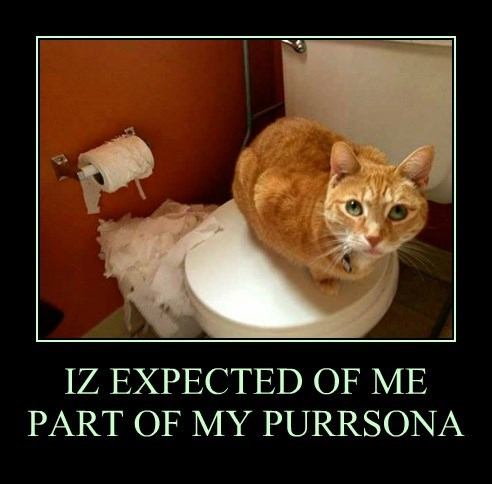 IZ EXPECTED OF ME PART OF MY PURRSONA