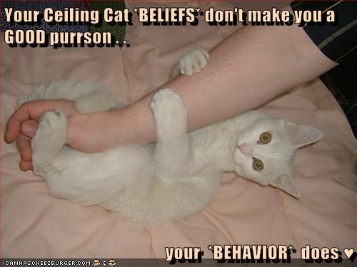 Your Ceiling Cat *BELIEFS* don't make you a GOOD purrson . .   your  *BEHAVIOR*  does ♥