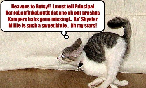 Kamp Kownsellor Miss Prisspuddy rushes as fast as her kittie legs will allow her to informs Principal Dontebanfinkaboutit that Shyster Millie is missing from Kamp!
