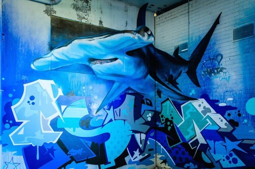 Street Art,shark,hacked irl