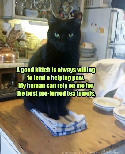Doing the right thing gives you that nice fuzzy feeling.
