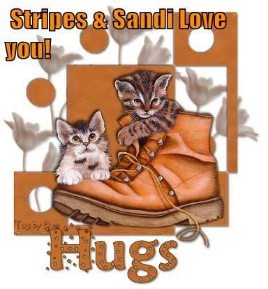 Stripes & Sandi Love you!