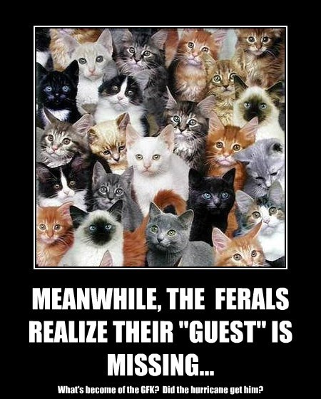 "MEANWHILE, THE  FERALS REALIZE THEIR ""GUEST"" IS MISSING..."