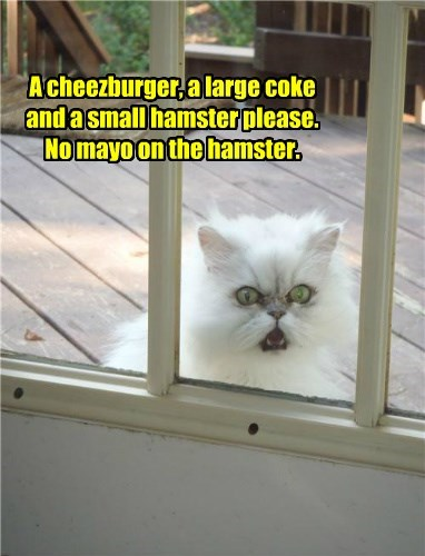 A cheezburger, a large coke and a small hamster please. No mayo on the hamster.