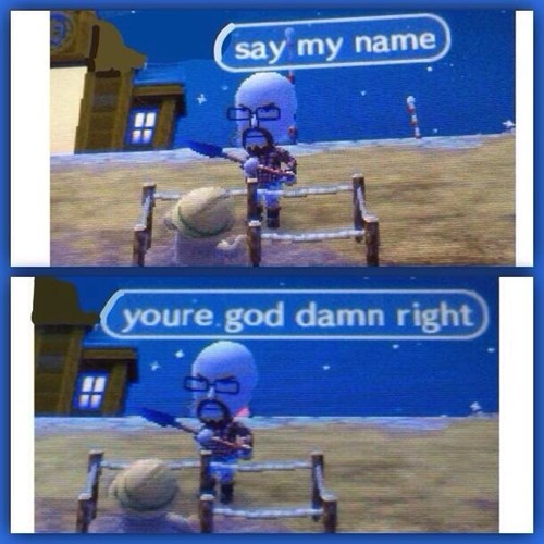 Walter White Plays Animal Crossing