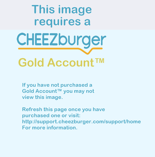 [Title Only Available to Cheezburger Gold Account™ Holders]