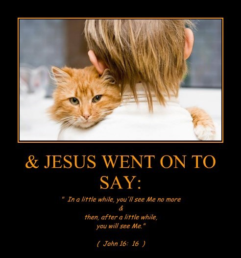 & JESUS WENT ON TO SAY:
