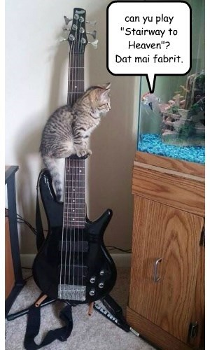 "can yu play ""Stairway to Heaven""?  Dat mai fabrit."