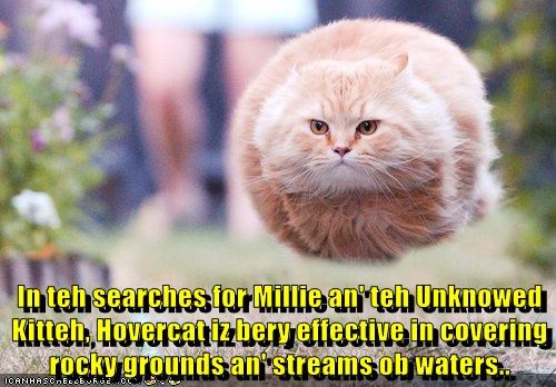 In teh searches for Millie an' teh Unknowed Kitteh, Hovercat iz bery effective in covering rocky grounds an' streams ob waters..