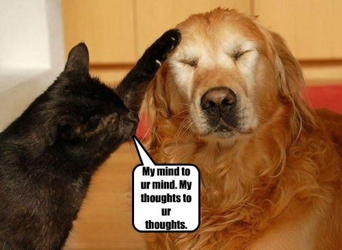 My mind to ur mind. My thoughts to ur thoughts.