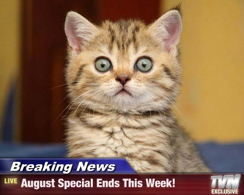 Breaking News - August Special Ends This Week!