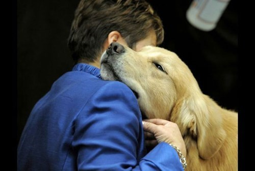 Happy National Dog Day! Here Are 26 Reasons Why Dogs Are Awesome.