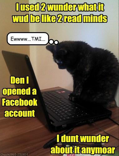 TMI,facebook,Cats