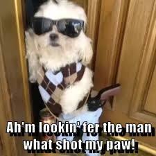 Ah'm lookin' fer the man what shot my paw!