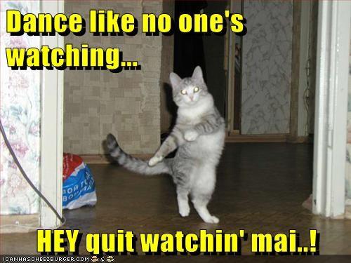 Dance like no one's watching...   HEY quit watchin' mai..!