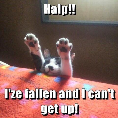 Halp!!   I'ze fallen and I can't get up!