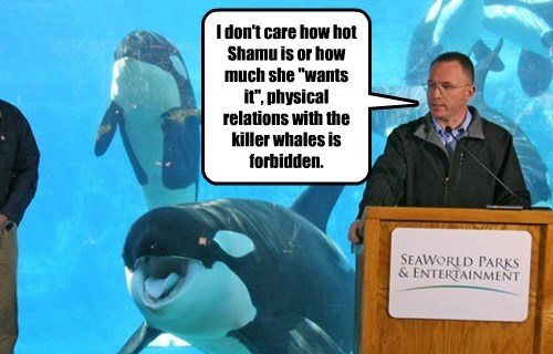 "I don't care how hot Shamu is or how much she ""wants it"", physical relations with the killer whales is forbidden."