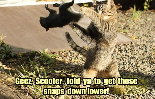 Geez,  Scooter,  told  ya  to  get  those  snaps  down lower!