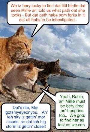 New Kamp Kowncellor Mrs. Igotsmyeyeonyou an' Kampers Robin Banks an' Manfred head in teh direkshun dat a littl birdie told dem dat Millie habs went in..